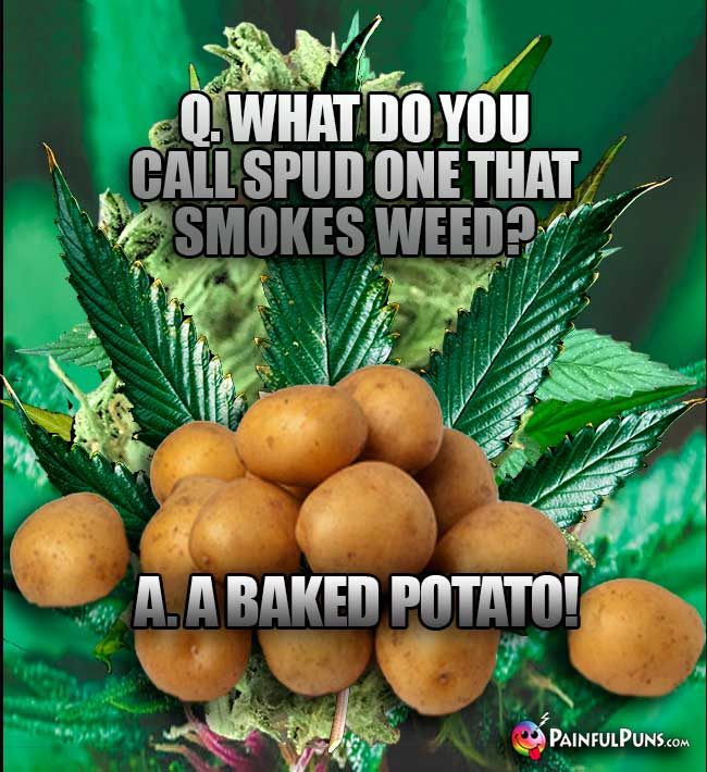 Taters Ask: What do you call spud one that smokes weed? A. A Baked Potato!