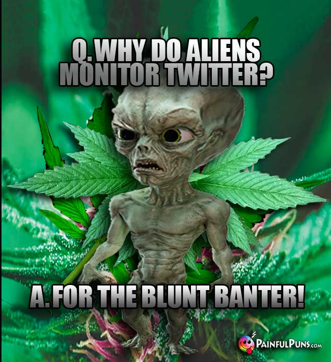 Q. Why do aliens monitor Twitter? A. For the blunt banter!
