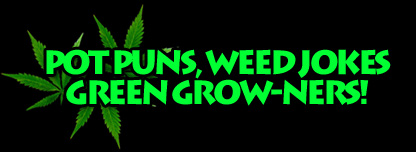 Pot Puns, Weed Jokes, Green Grow-ners!