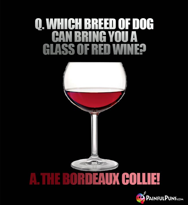Wine Humor: Q. Which breed of dog can bring you a glass of red wine? A. The bordeaux vollie!