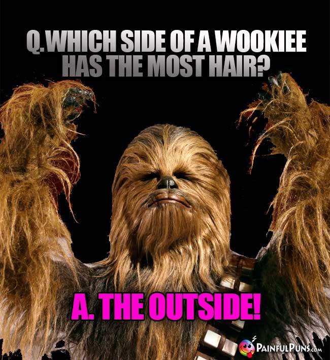 Q. Which side of a Wookiee has the most hair? A. The Outside!