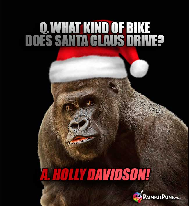 Q. What kind of bike does Santa Claus drive? A. Holly Davidson!