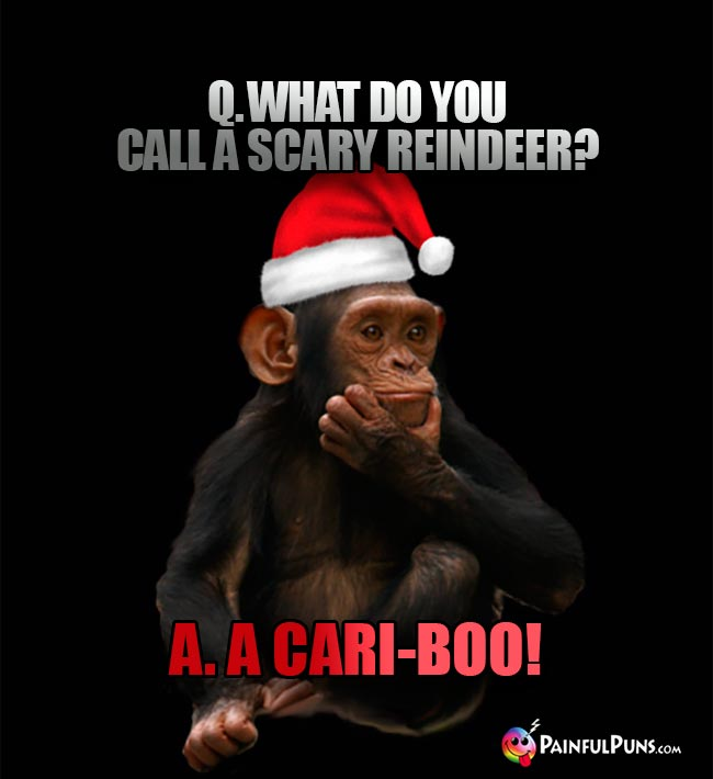 Q. What do you call a scary reindeer? A. A Cari-Boo!