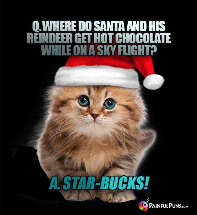 Q. Where do Santa and his reindeer get hot chocolate whle on a sky flight? A. Star-Bucks!