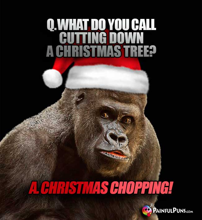 Q. What do you call cutting down a Christmas tree? A. Christmas Chopping!