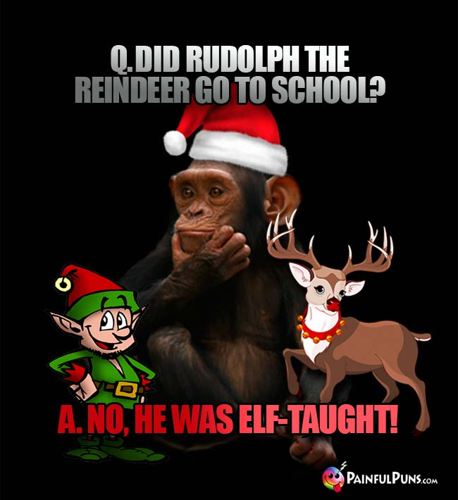 Q. Did Rudolph the reindeer go to school? A. No, he was elf-taught!