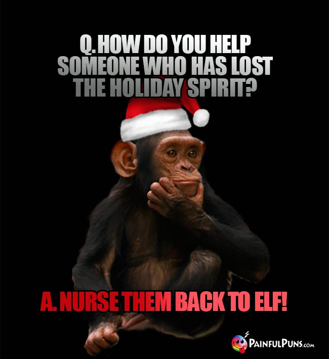 Q. How do you help someone who has lost the holiday spirit? A. Nurse them back to elf!
