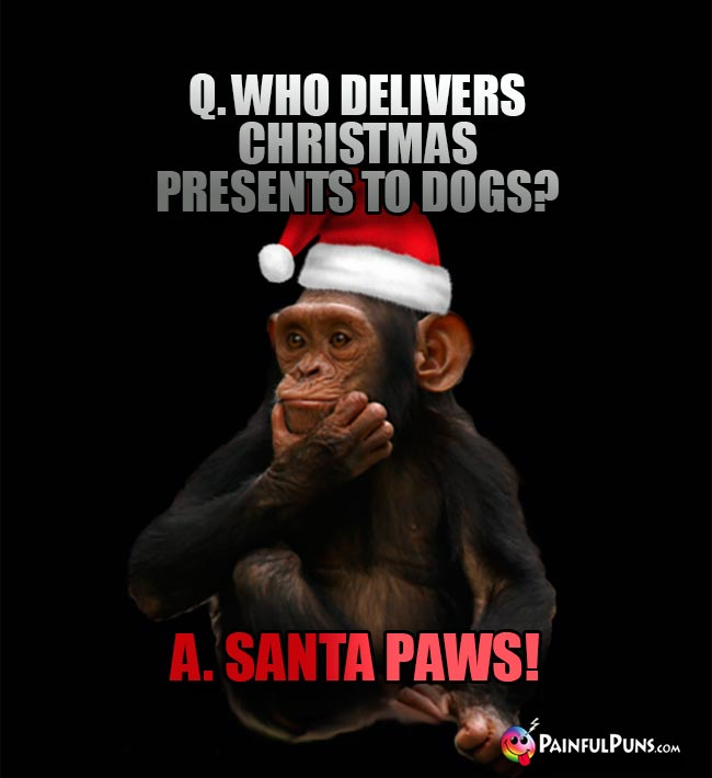 Q. Who delivers Christmas presents to dogs? A. Santa Paws!