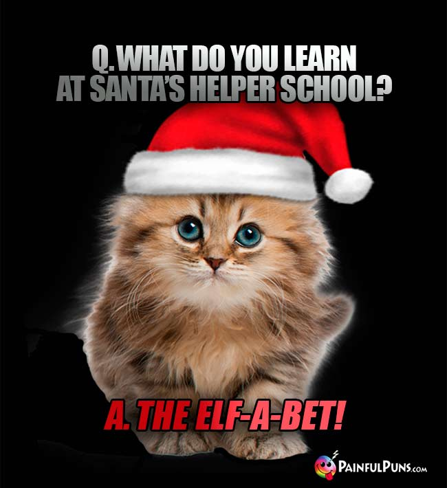 Q. What do you learn at Santa's helper school? A. The Elf-a-bet!