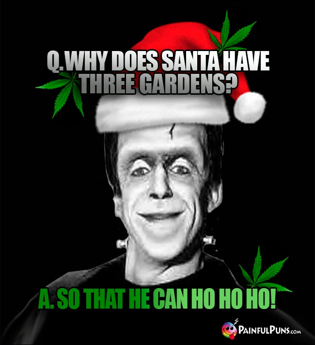 Q. Why does Santa have three gardens? A. So that he can Ho Ho Ho!