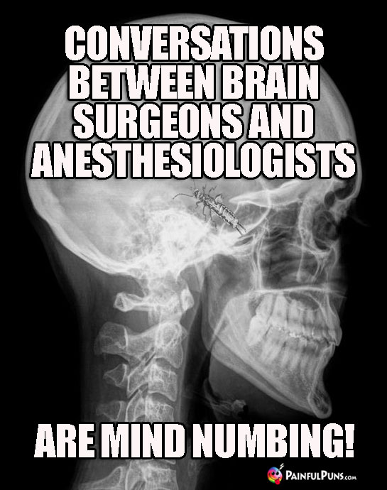 Conversations between brain surgeons and anesthesiologists are mind numbing.